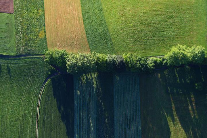 Landwirschaftliche Strukturen